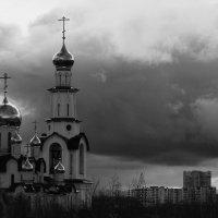 Под чёрным крылом. :: leonid kononov