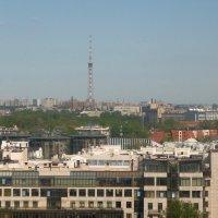 Петроградка :: tipchik