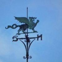 Флюгер Валлийский дракон :: Natalia Harries