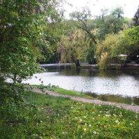 Наш парк :: Ната Майская