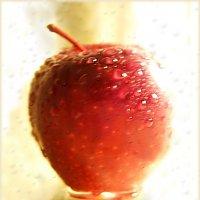 Наливное яблочко... Дивный сон весны... :: Людмила Богданова (Скачко)