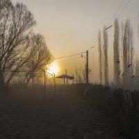 Новый день зарождается :: Sergey Kuznetcov