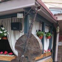 ПРИШЕЛЕЦ  привёз свой музыкальный инструмент! :: Galina194701