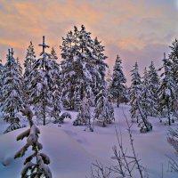 зимний лес :: Валерия Воронова