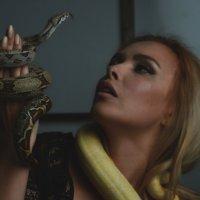 Змеи :: Алла Мосолкова