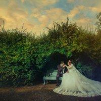 wedding :: David Babayan