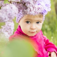 Весна в саду :: Дмитрий Новиков