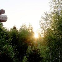 Майский рассвет :: Андрей Скорняков