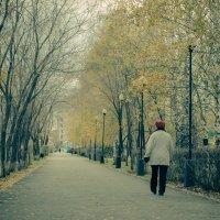 Осень :: Evgenija Enot