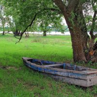 Последнего пристанища покой... :: Лесо-Вед (Баранов)