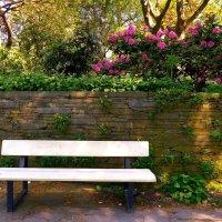 Скамейка у каменной стены :: Nina Yudicheva