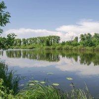 Озеро Магистратское :: Сергей Тарабара