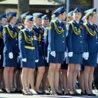 Краса парада :: Иван Нищун