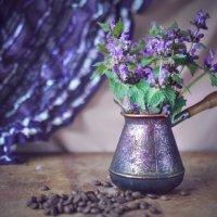 лиловое настроение :: Тася Тыжфотографиня