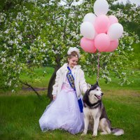 Яблони в цвету :: Ольга Осипова