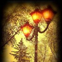 фонари... :: Таня Новикова