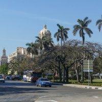 Направляемся к музею Революции (Гавана, Куба) :: Юрий Поляков