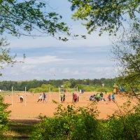 Пляжный волейбол :: Виталий