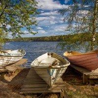 Озеро Каукаярви. :: Elena Klimova