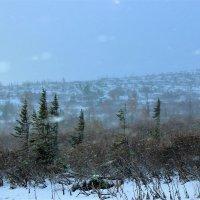 Метёт пурга на перевале в сентябре :: Сергей Чиняев