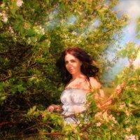 Яблони в цвету :: Марина Белкина