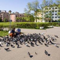 Прогулка по городу :: Светлана Ку