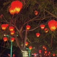 Новогодняя ночь в Начанге :: Виктор Куприянов
