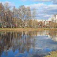 В городском парке :: Галина Новинская