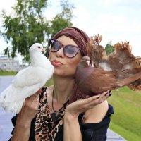 Любовь и голуби.... :: Елена