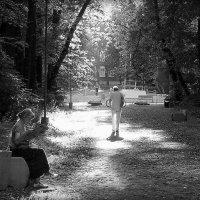 В летнем парке-2 :: Надежда Бахолдина