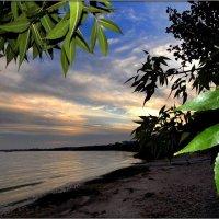 Пляж Таганрога :: оксана косатенко