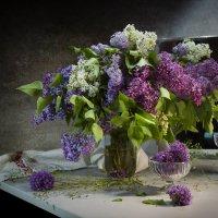 В моем сердце снова весна :: Оксана Евкодимова