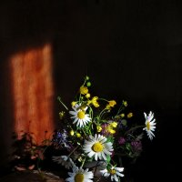 Солнца лучик :: Наталья Джикидзе (Берёзина)