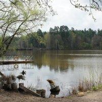 Раифское озеро - «Озеро, неквакующих лягушек» :: Елена Павлова (Смолова)