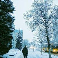 Зима 2016 :: Юлия Ярушкина