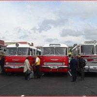 Автобус ЗиС-127 Маршрут «Таллинн-Ленинград» :: Вера