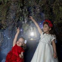 Две принцессы :: Екатерина Жукова