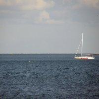 Море :: Valdemar Кравченко