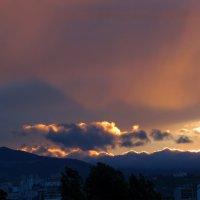 Закат мая :: Наталья Джикидзе (Берёзина)