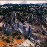 Скальная природа :: Владимир Морозов