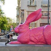 Венский  кролик :: Николай Танаев