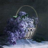 Сирень в корзине :: Ирина Клейменова