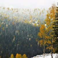 Первый снег сентября :: Сергей Чиняев