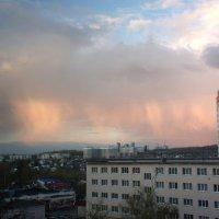 Розовый дождь :: Николай Филоненко