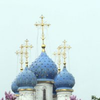 Май :: Михаил Бибичков