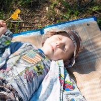Счастье спит, оно устало! :: Татьяна