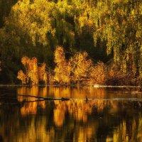 Янтарная осень. :: mike95