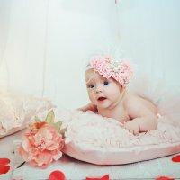 Фотосъемка младенцев в студии :: марина алексеева