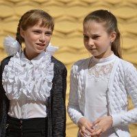 Подружки :: Валерий Лазарев
