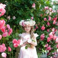 Розовый сад :: Алёна Лютая